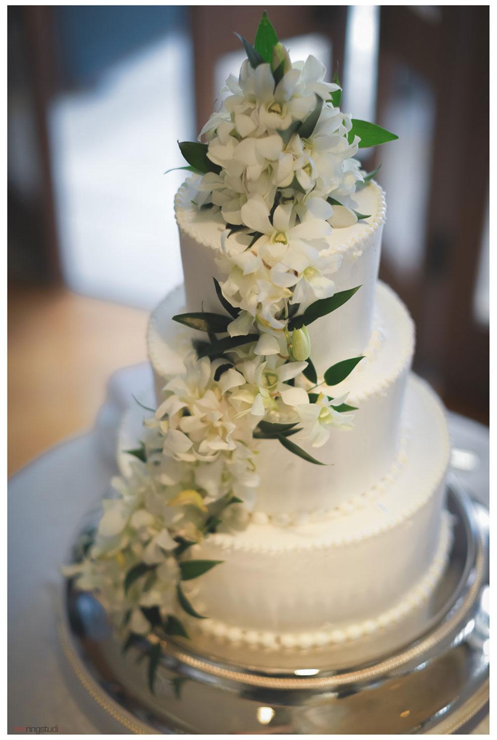 04-Cake.jpg