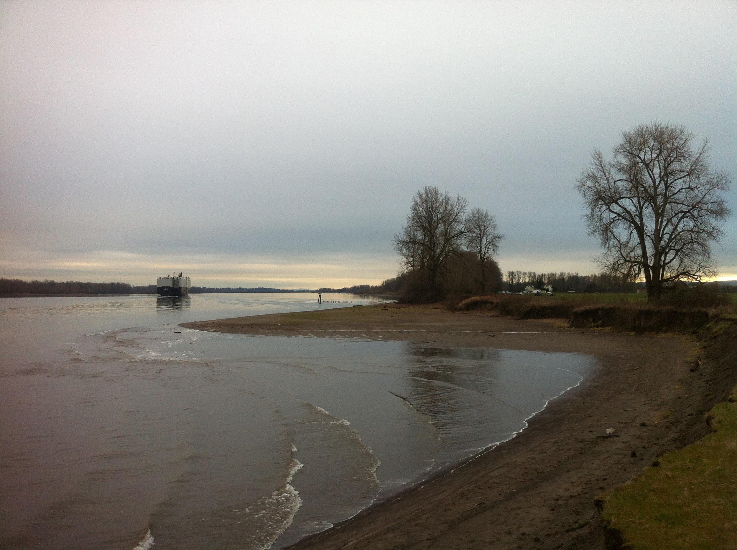 Sauvie Island View