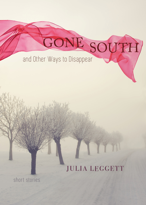 Gone+South+cover.jpg