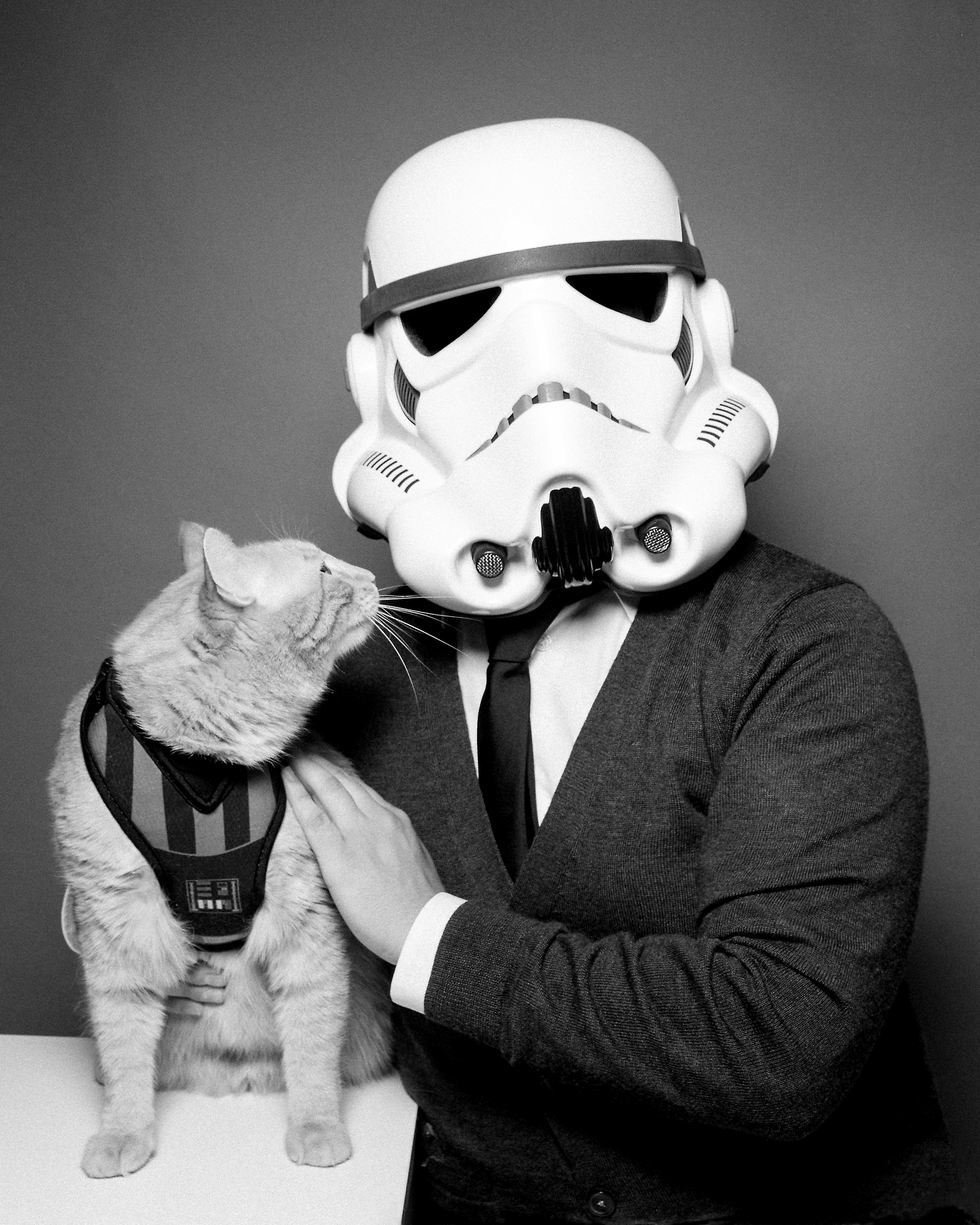 Tiny Deer Studio Portrait - Star Wars - Cat - Storm Trooper.jpg
