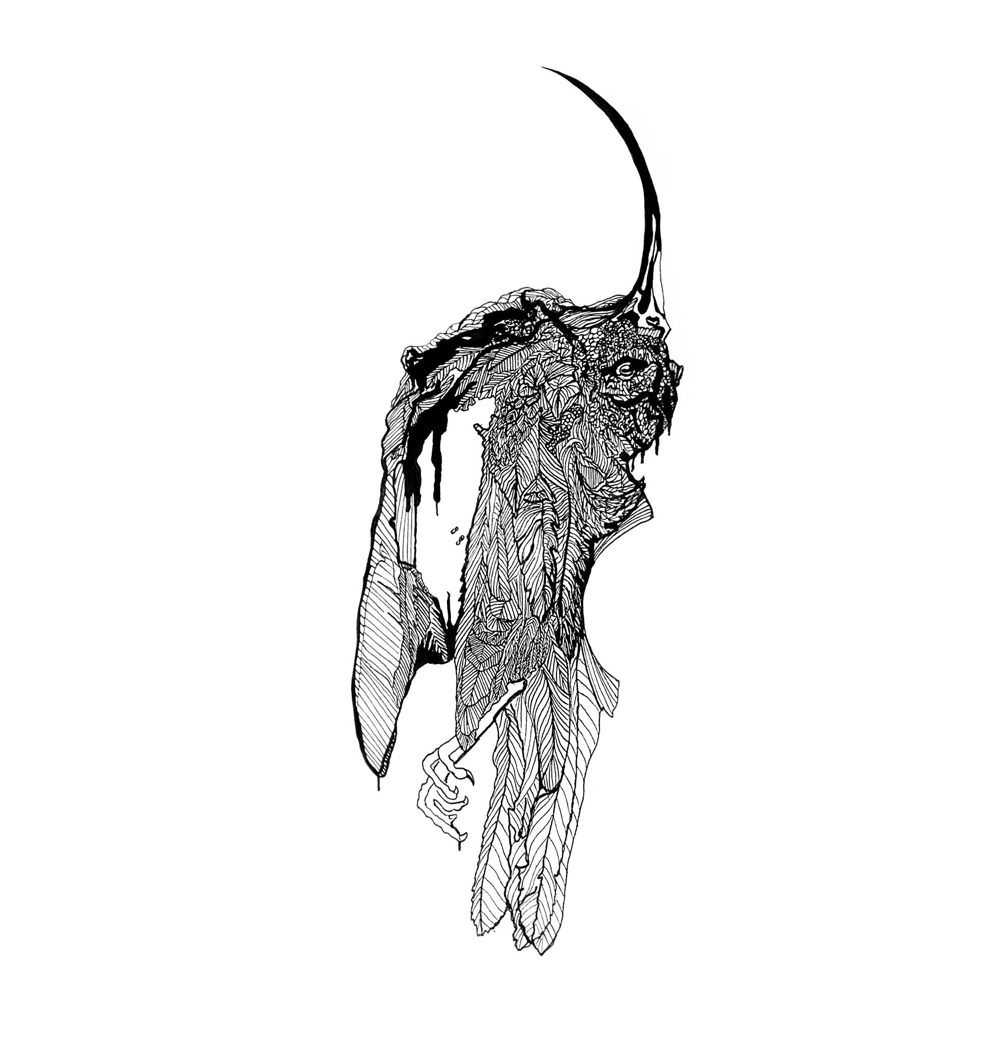 """Holly Broderick  Decay  Pen and ink 17"""" by 11"""" 2014"""