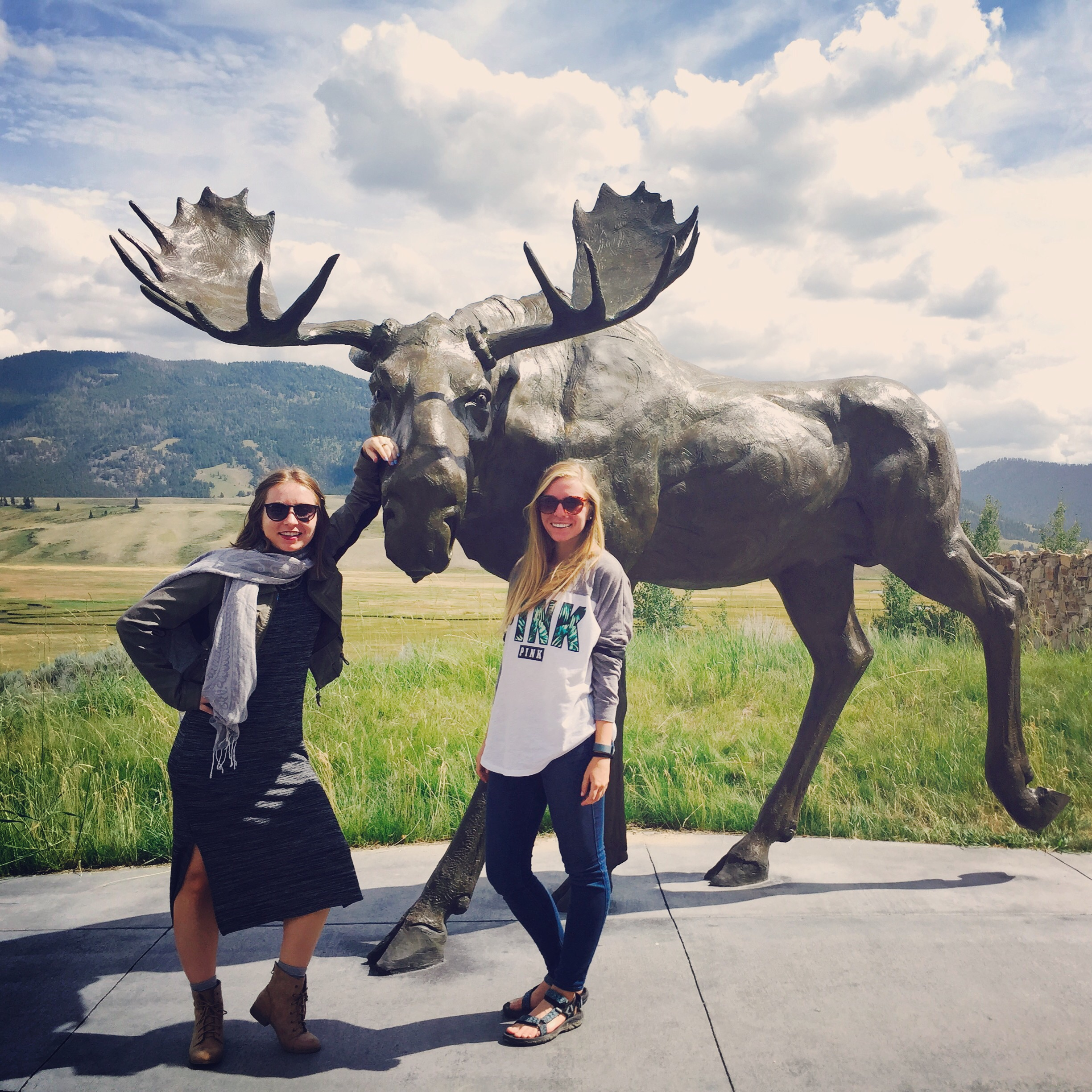 Check out this bronze Moose sculpture we found by the airport at the National Museum of Wildlife Art.