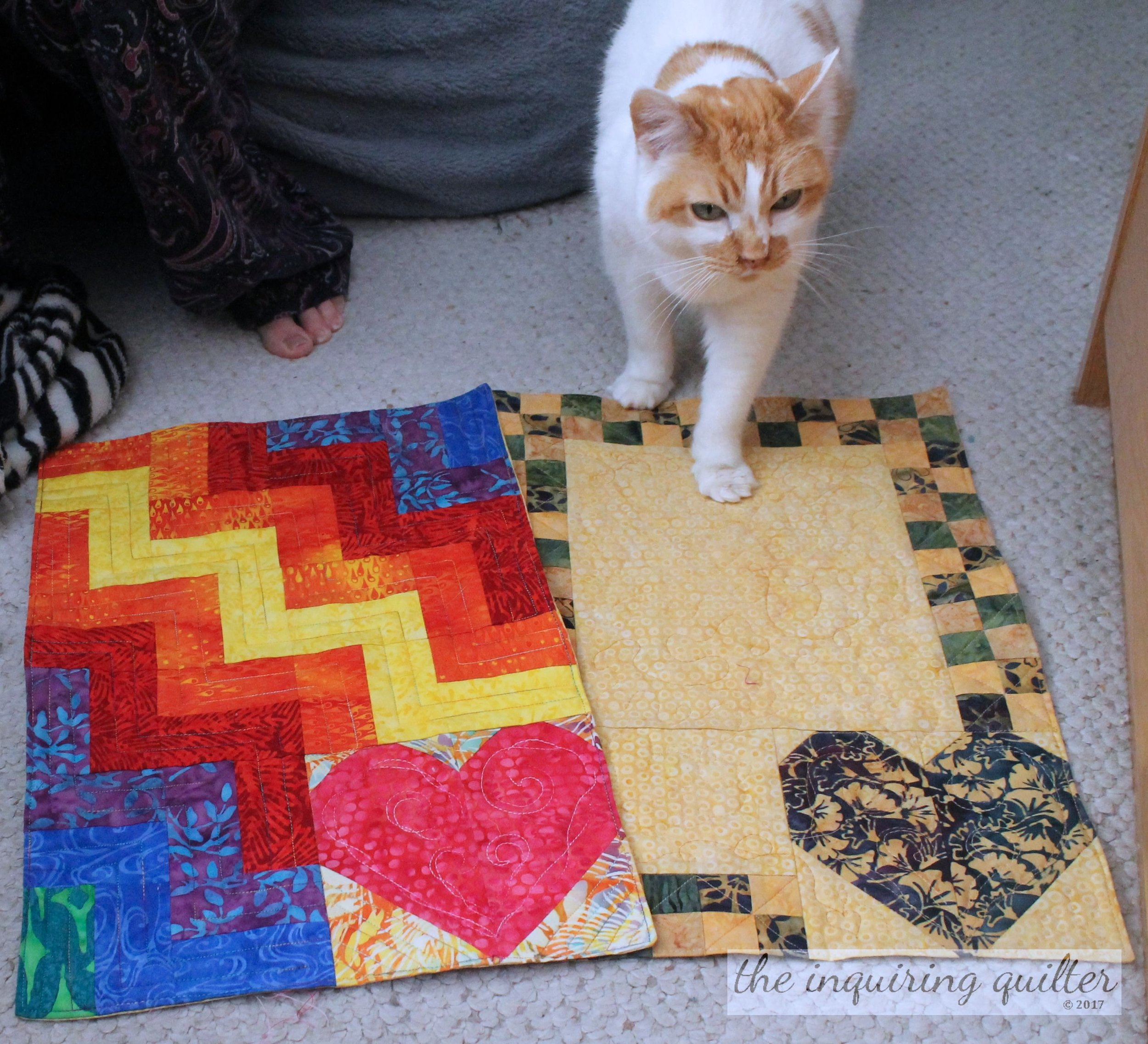 Kennel quilts and Lucy 9.jpg