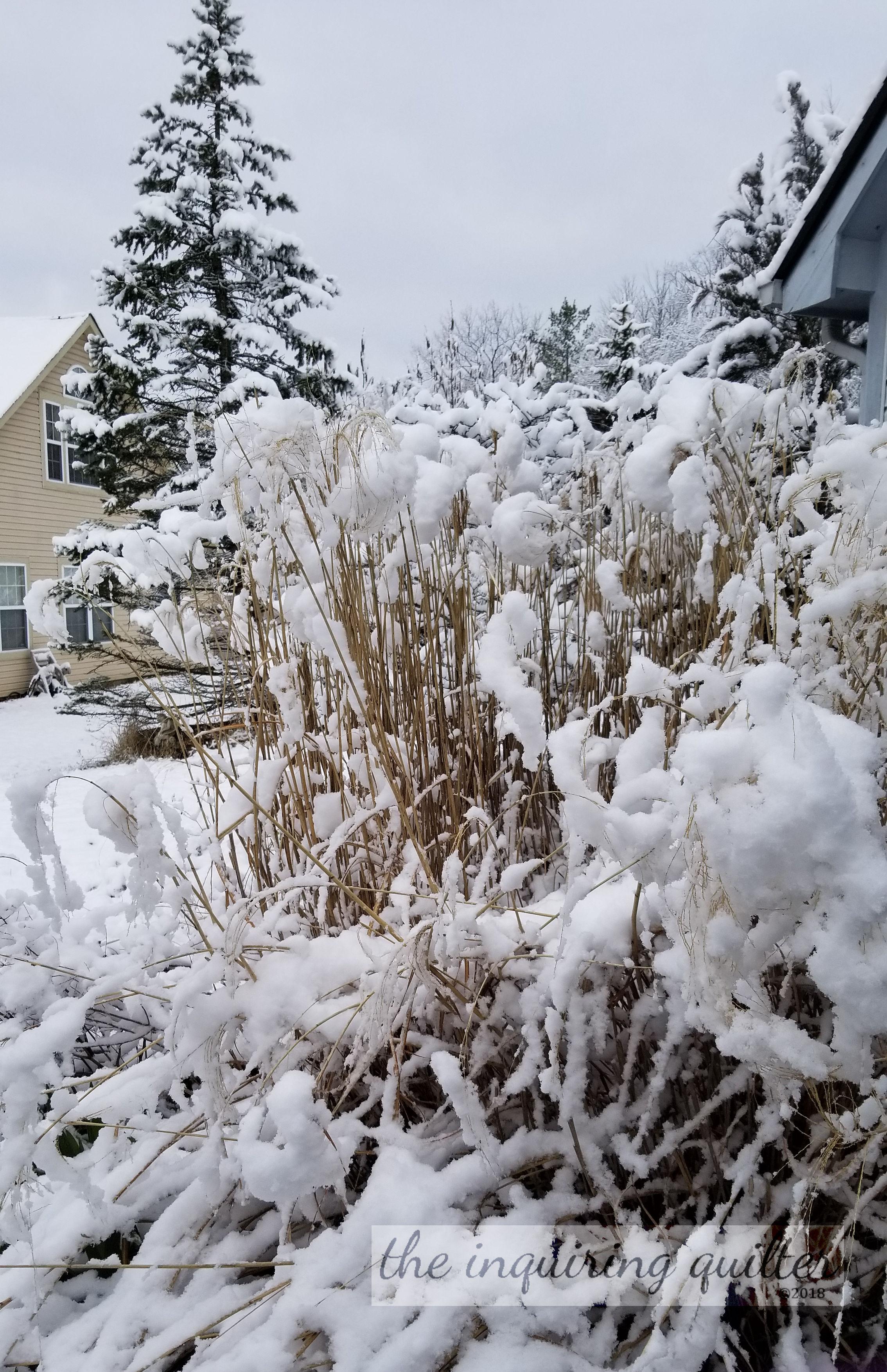 2018 April 1 snow 2.jpg