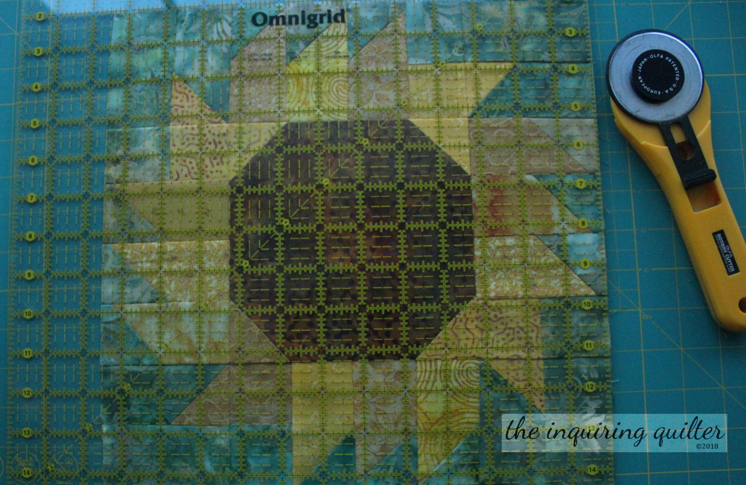 Sunflower 10.jpg