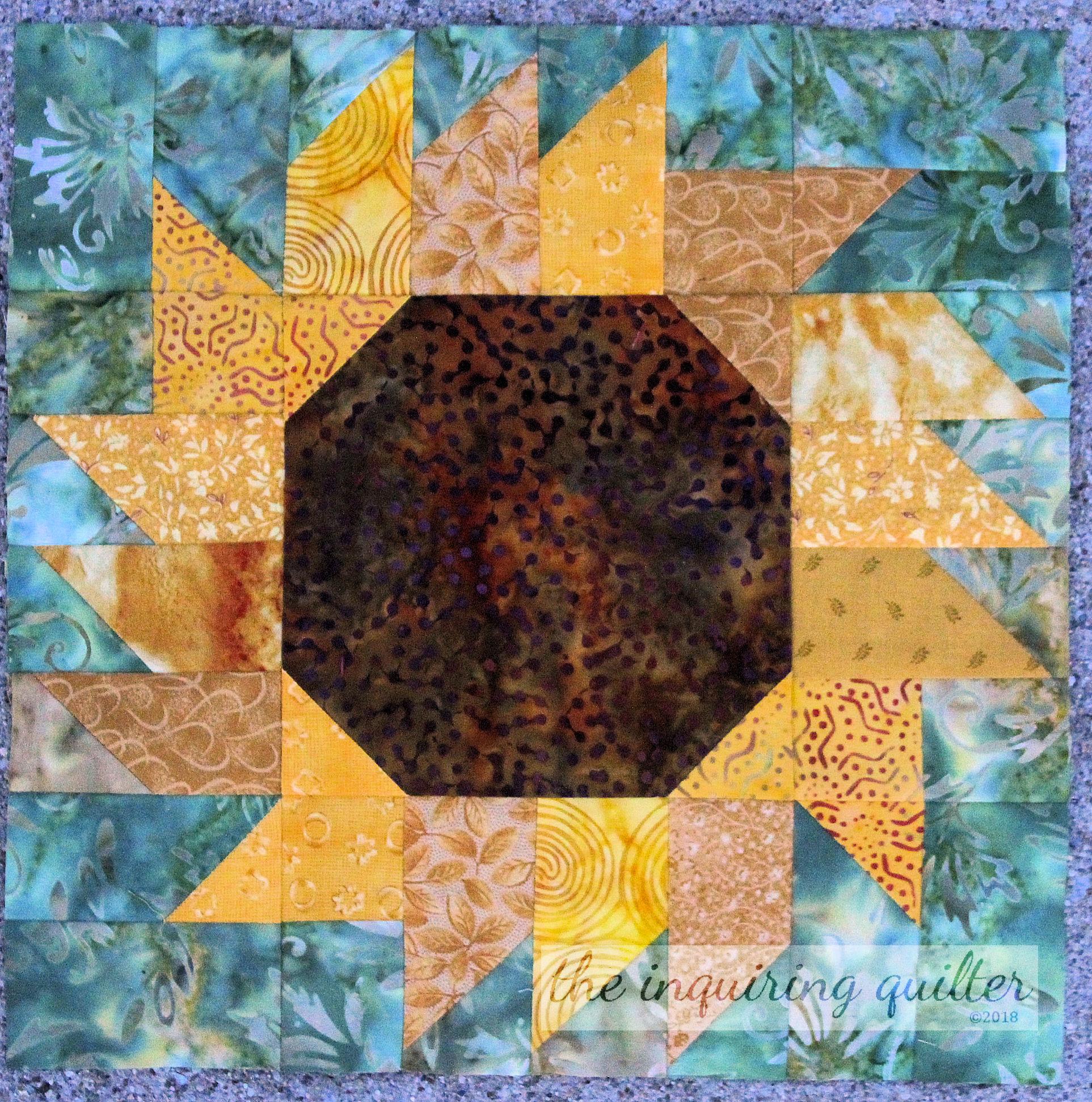 Sunflower 12.jpg