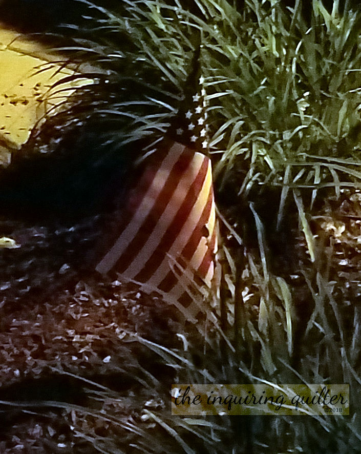 Planting flags on July Fourth 3.jpg