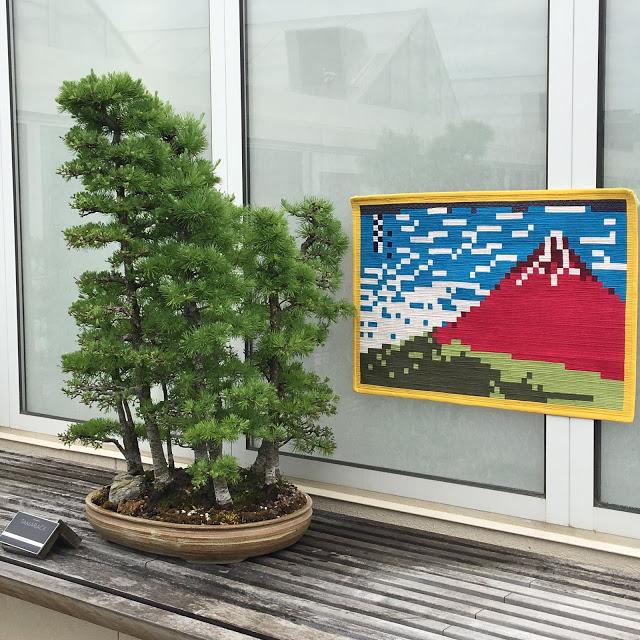 Nancy Red Fuji 3.jpg