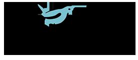 logo_riley.png