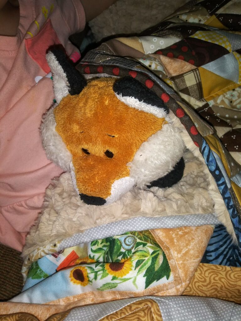 Andrea HST doll quilt for Foxy.jpg