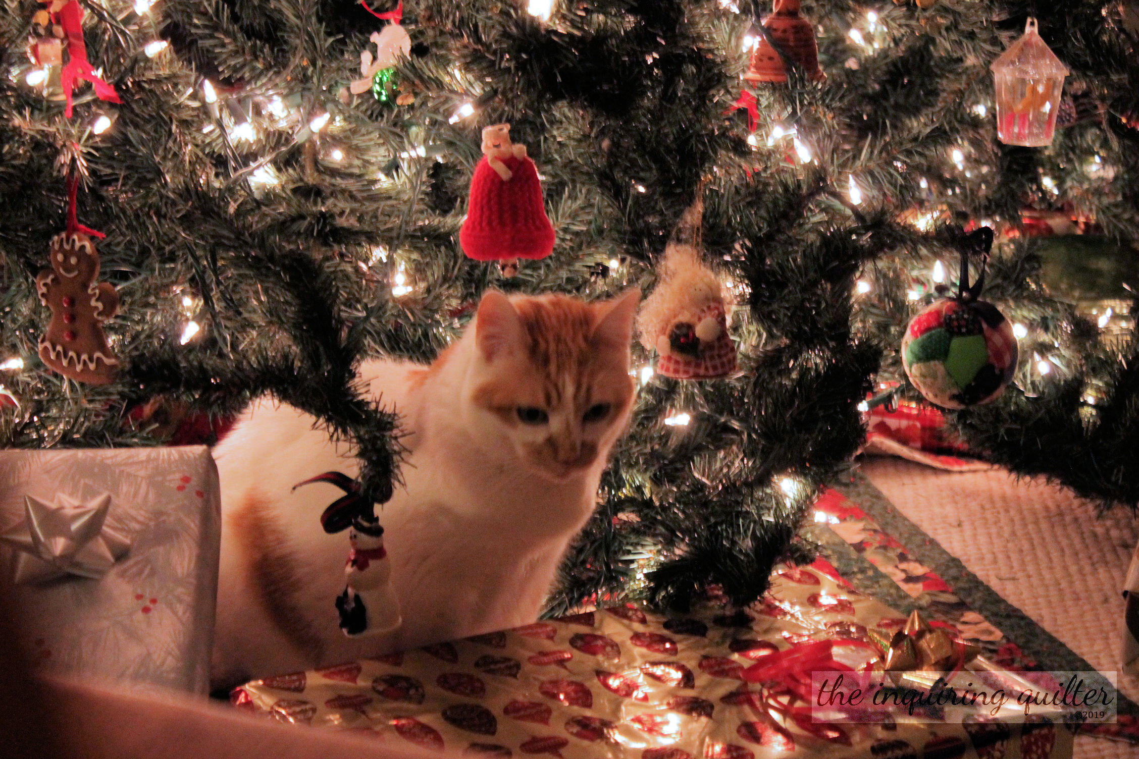 Lucy and presents 2014 1.jpg