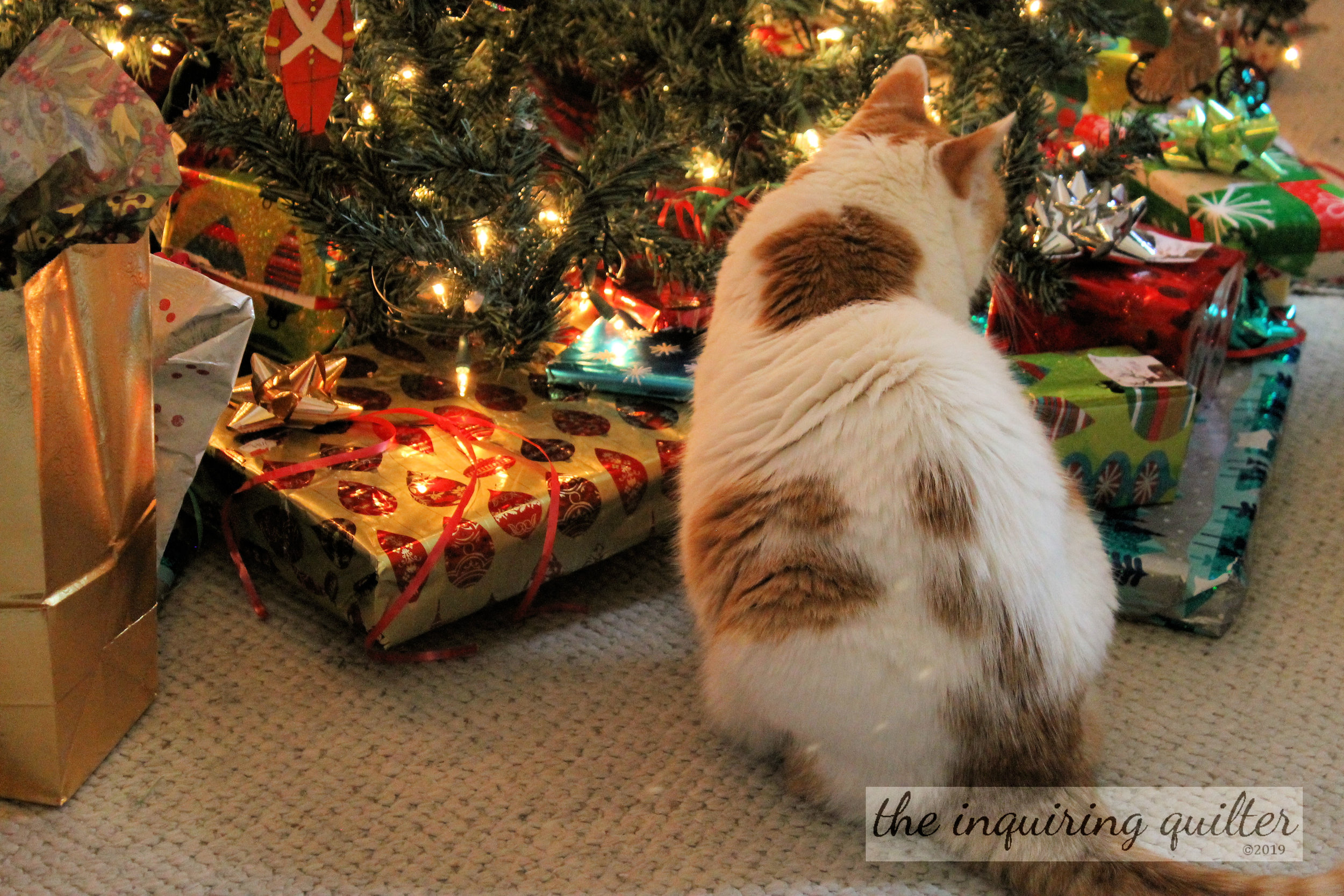Lucy and gifts 2016.jpg