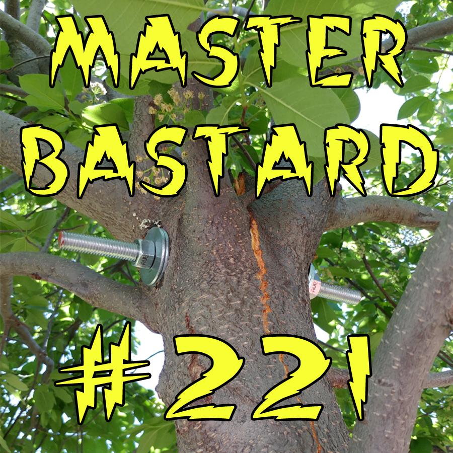 Master Bastard 221.jpg