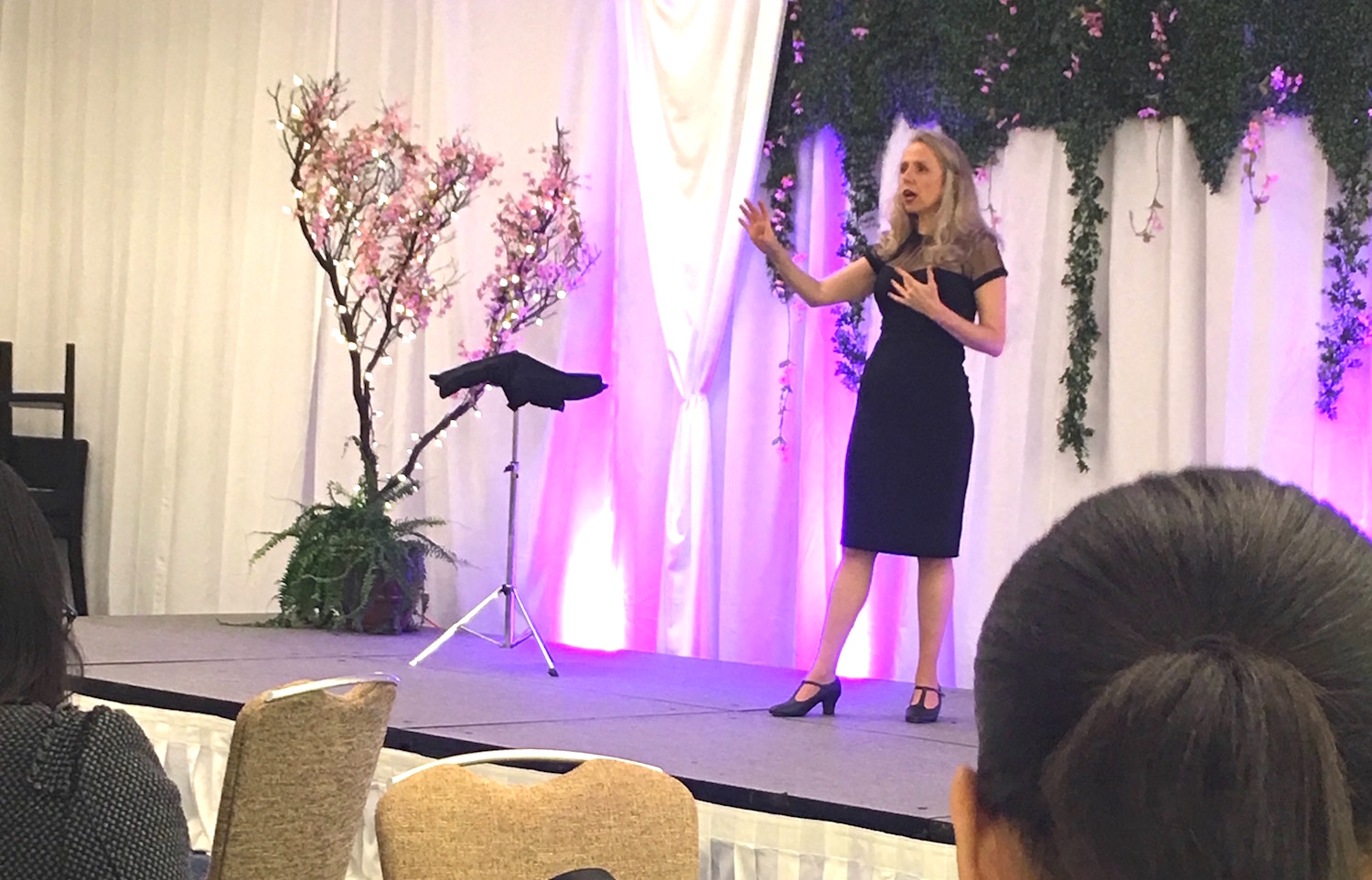 Heather Rogers Speaking to the Limitless Women Confernece 2017.jpg