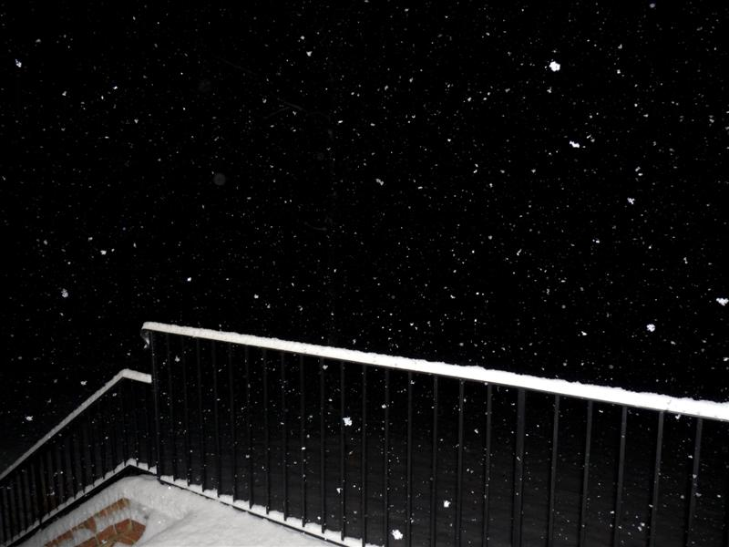 December 18, 2009 Snow Storm Virginia ButterYum