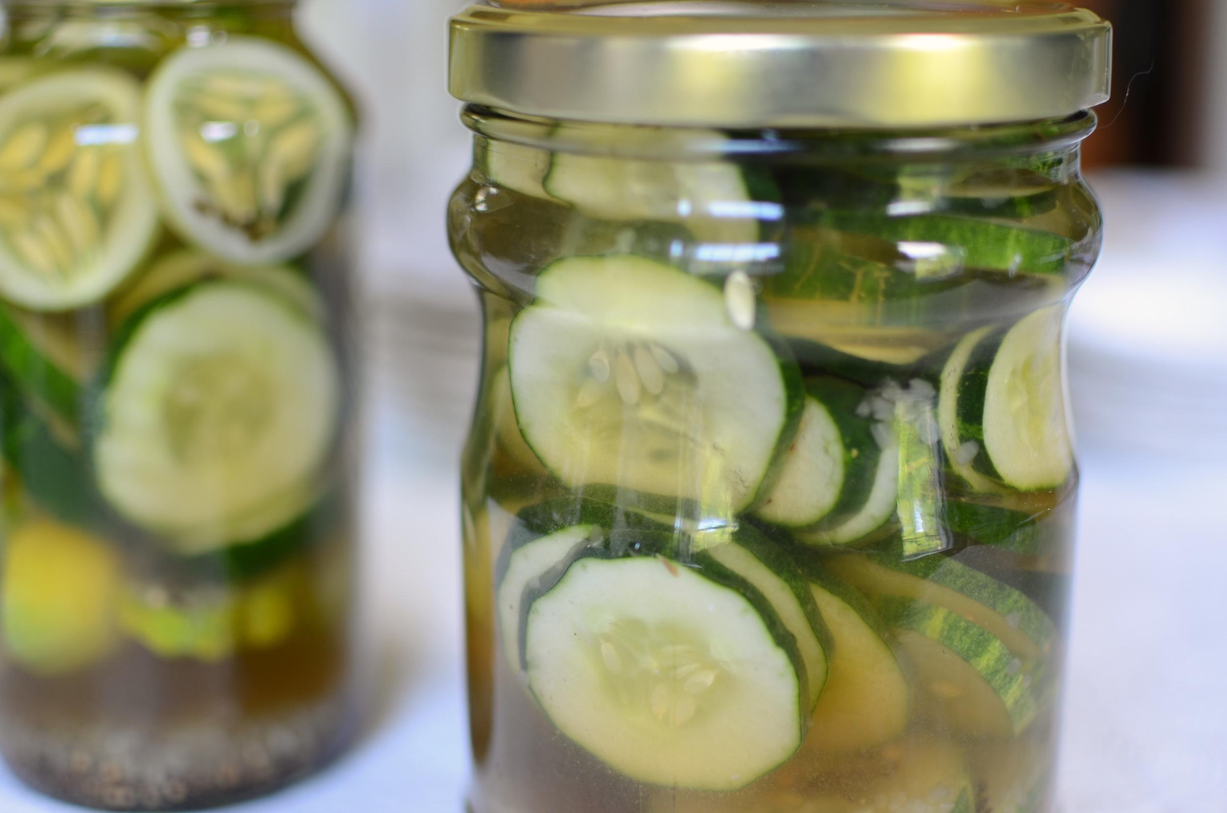 Claussen Dill Pickle Clone - ButterYum — Claussen Dill pickle recipe clone. Claussen pickle recipe. how to make pickles like Claussen. how to make dill pickles. homemade dill pickles. making dill pickles at home. how to make dill pickles. best dill pickle recipe.