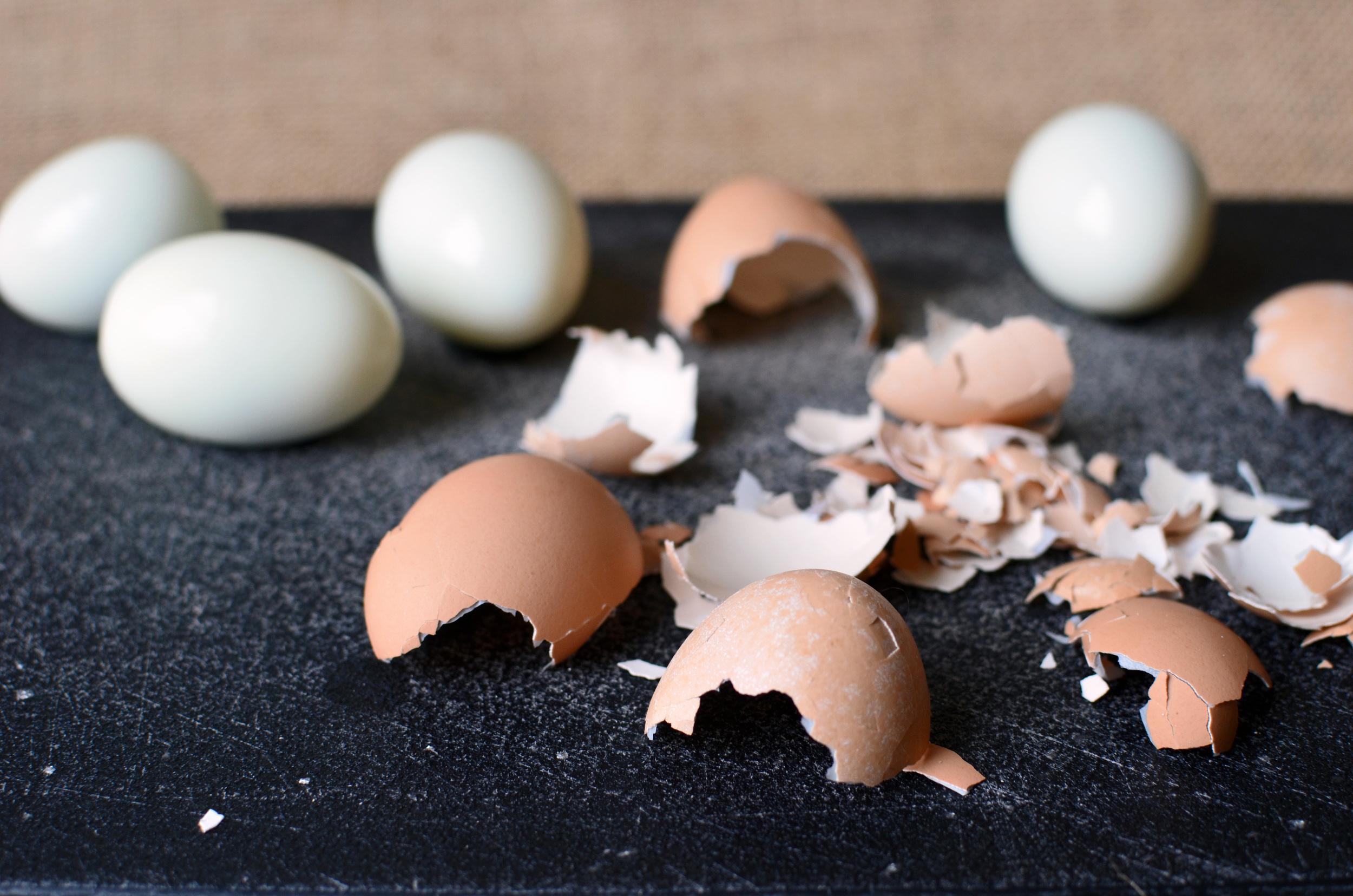 How to Peel Farm Fresh Eggs - ButterYum