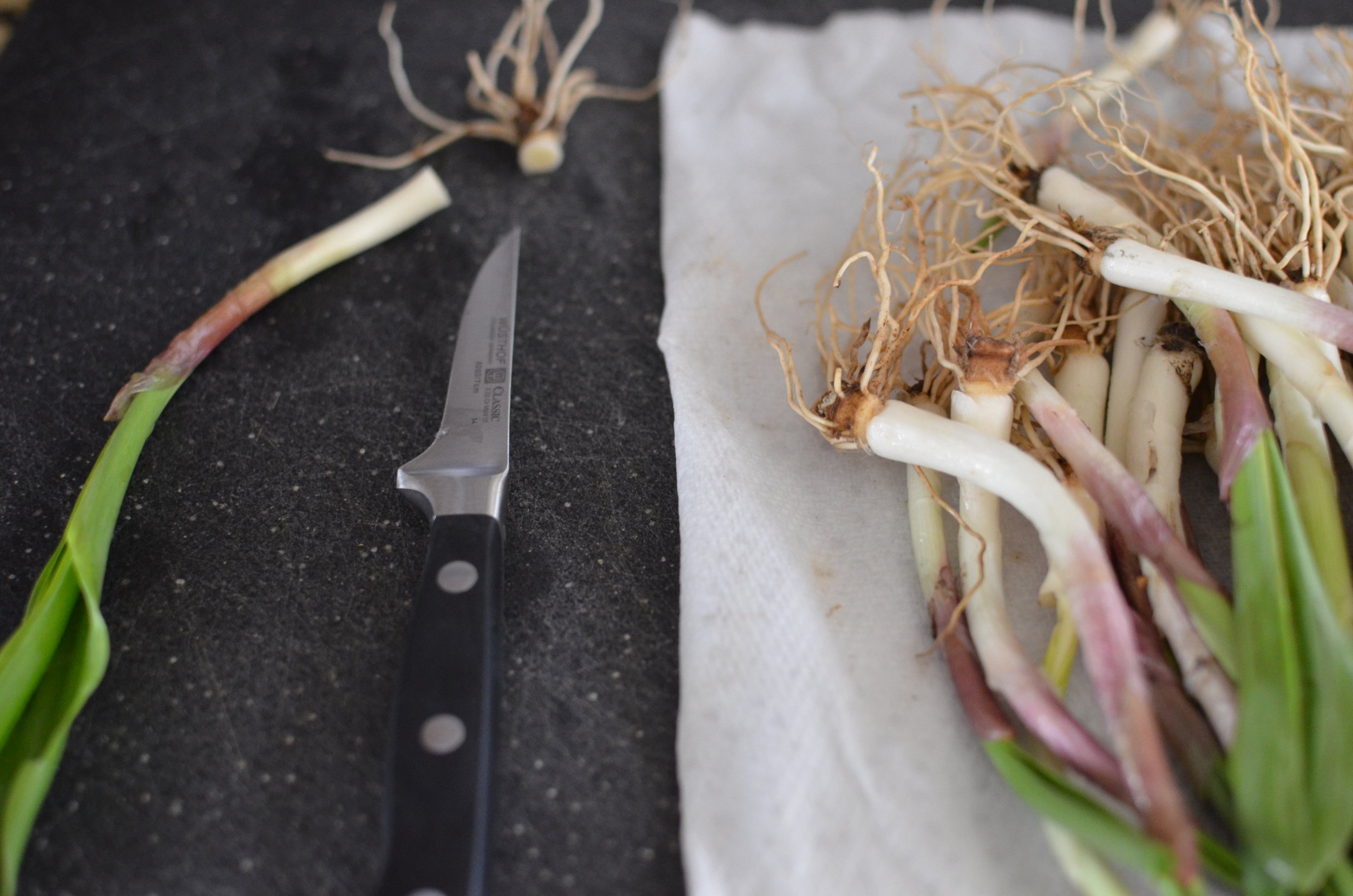 how-to-trim-ramps-butteryum