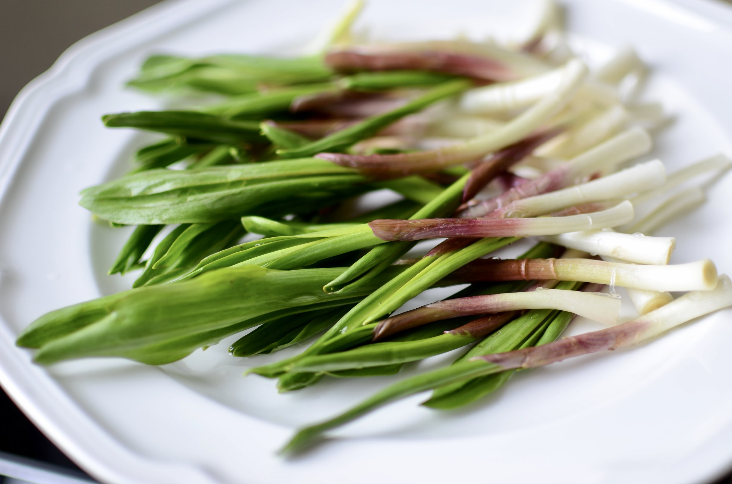 how to cook ramps - butteryum. what to do with ramps. ramps recipes. ramp recipes. skillet ramps. grilling ramps. onion ramp recipes. garlic ramp recipes. wood leek recipes. wild leek recipe. cooking with wild leeks. what do ramps taste like.