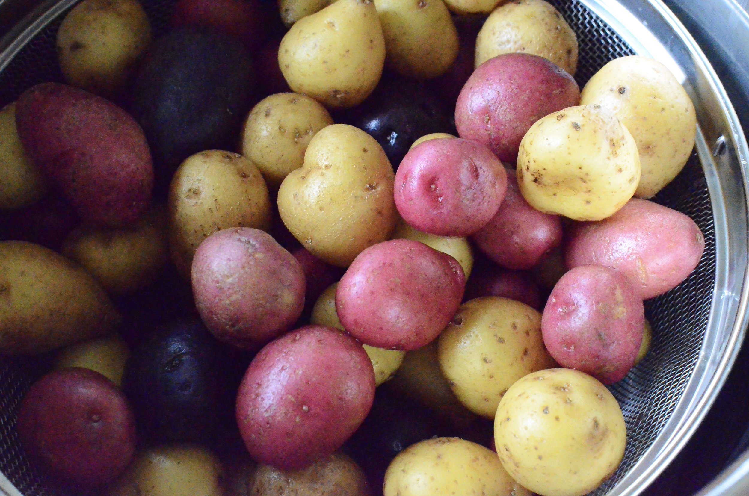 cooking-bite-size-potatoes-in-instant-pot-butteryum