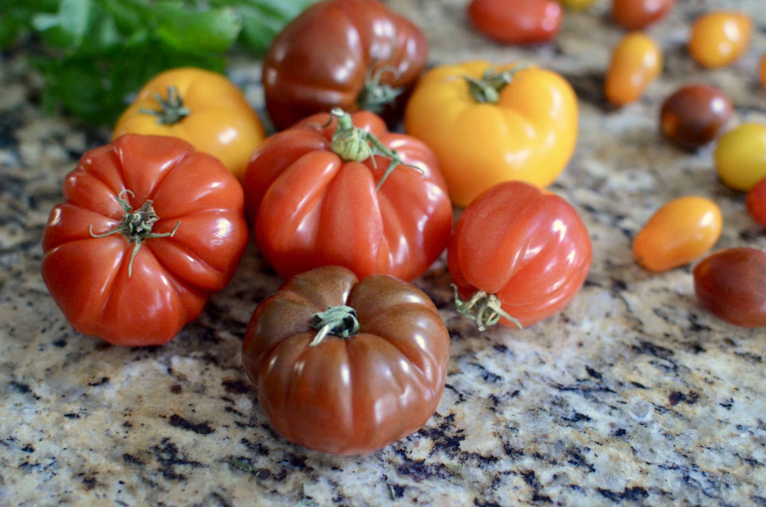 virginia-heirloom-tomatoes-butteryum