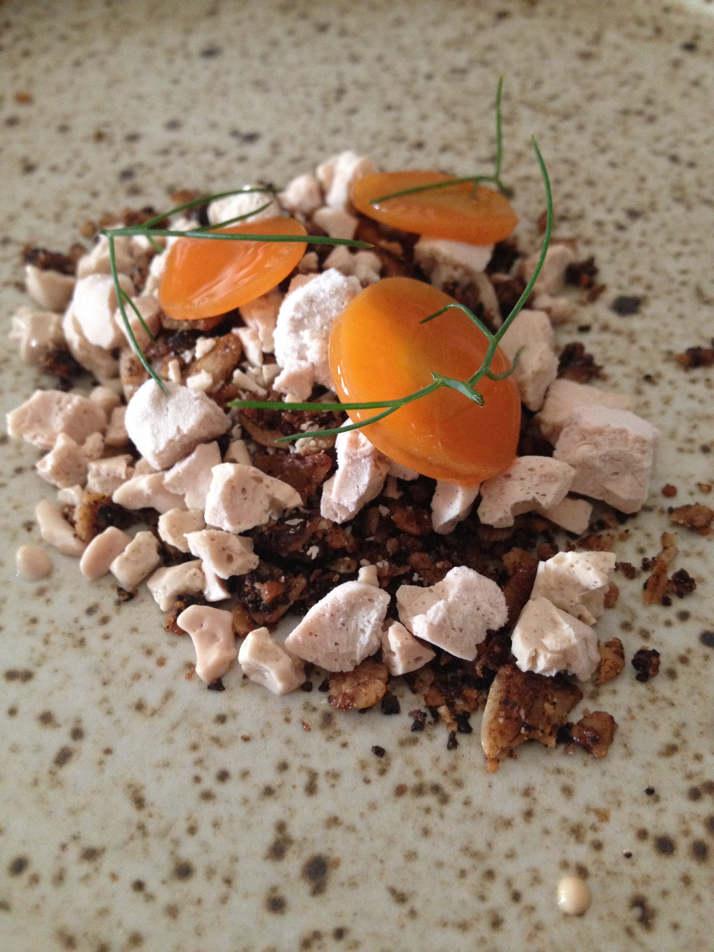 Frozen duck liver with carrot and coffee granola.