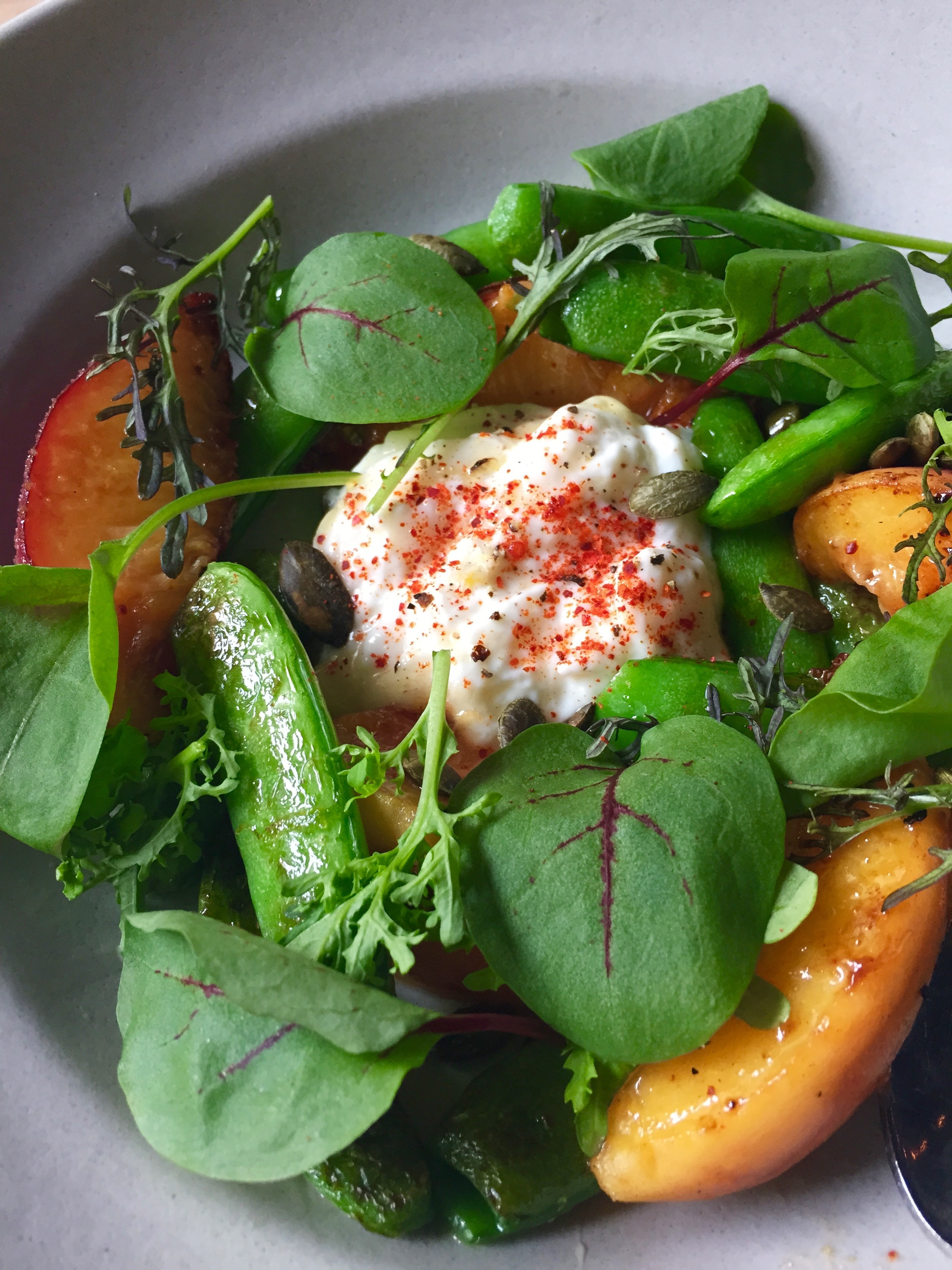 Snap Peas & Peaches with honey, burrata, and toasted pumpkin seeds.