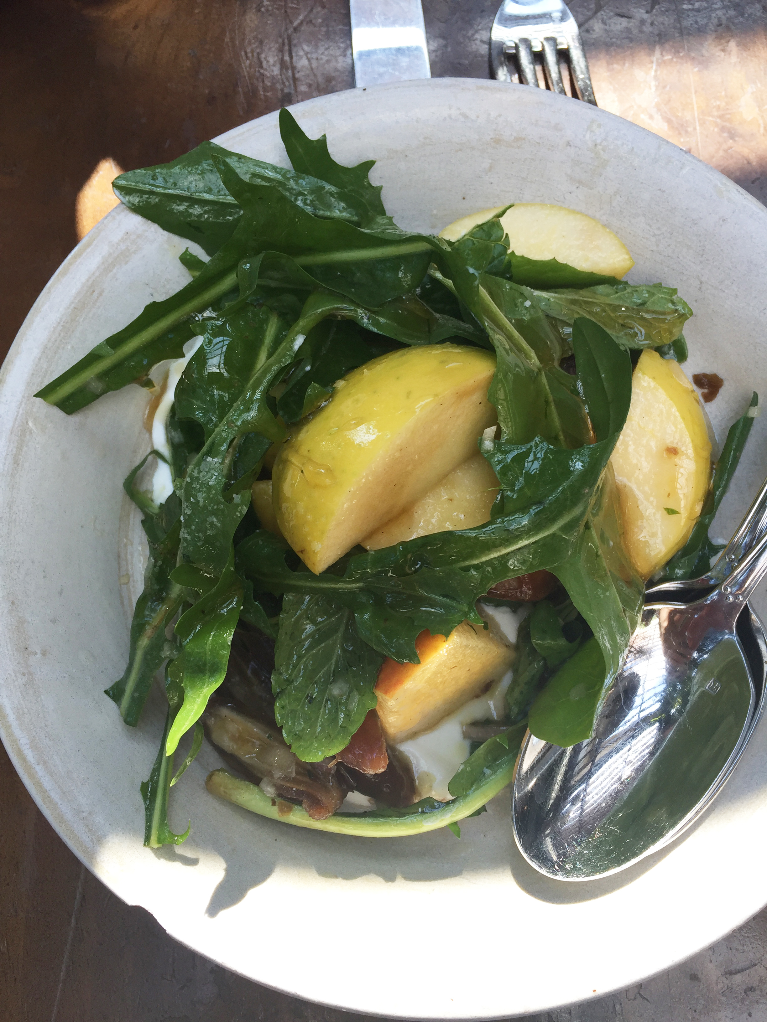 Apple, Deglet Noor date, yogurt, arugula, honey, and mint salad.
