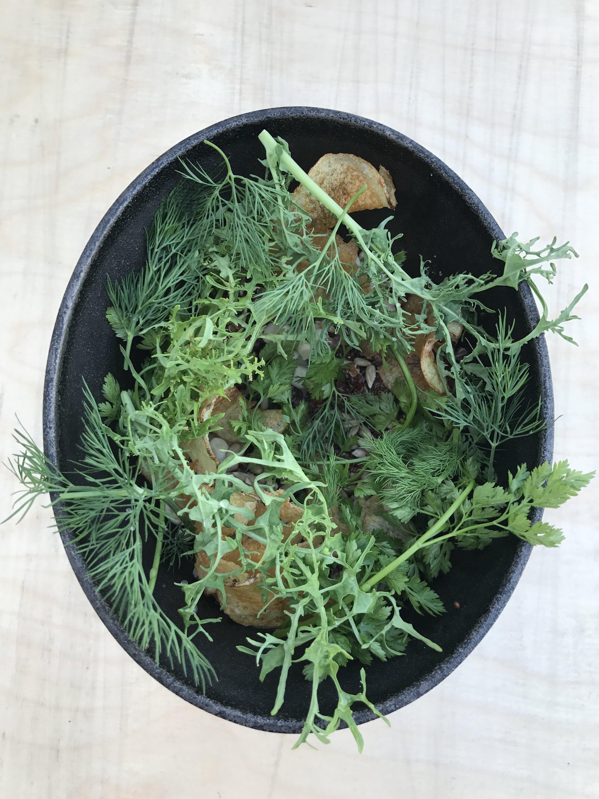 Organic hen egg, crispy potato, quinoa, pickled mushrooms and greens
