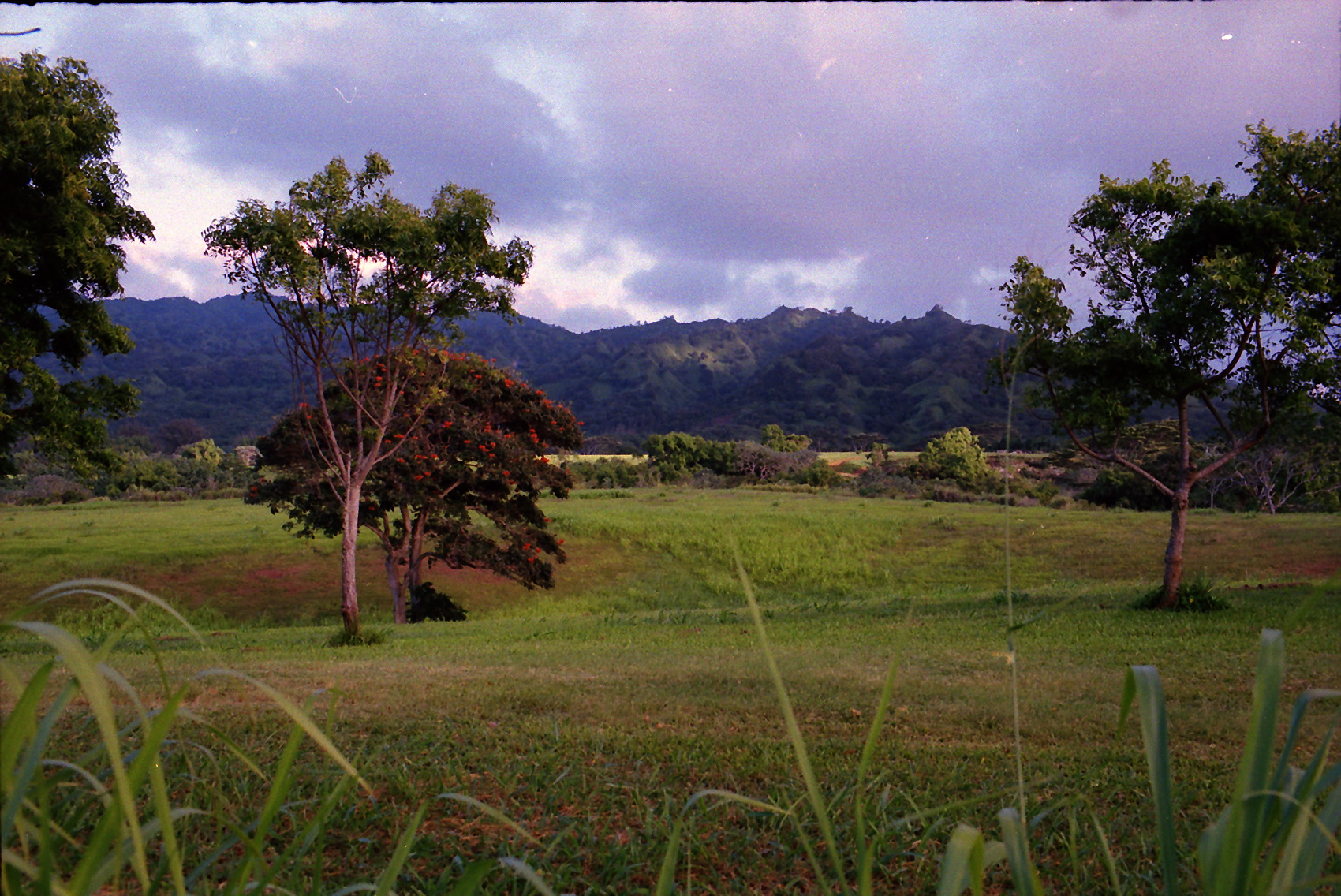 Hawaii_0013.jpg