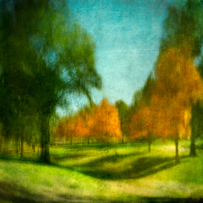 golfcourse trees 2V5.jpg