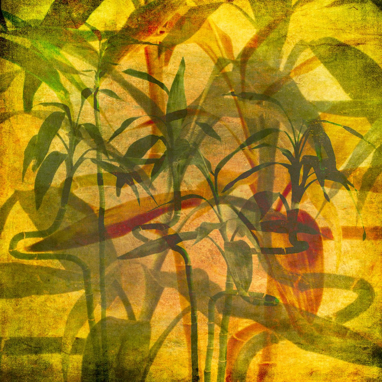 20030317_spring_flowers_0043.jpg