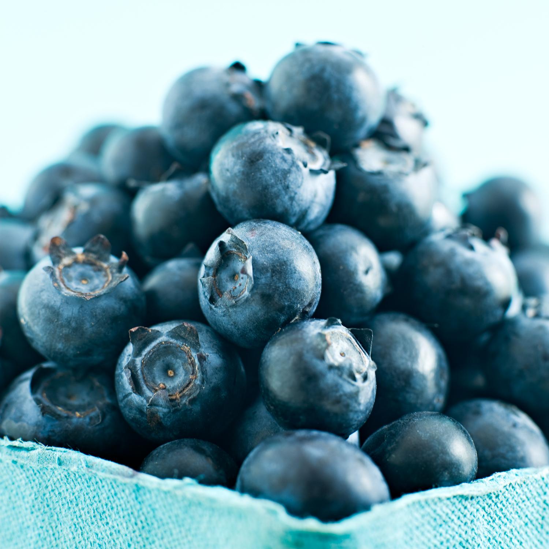 blueberries_final1.jpg