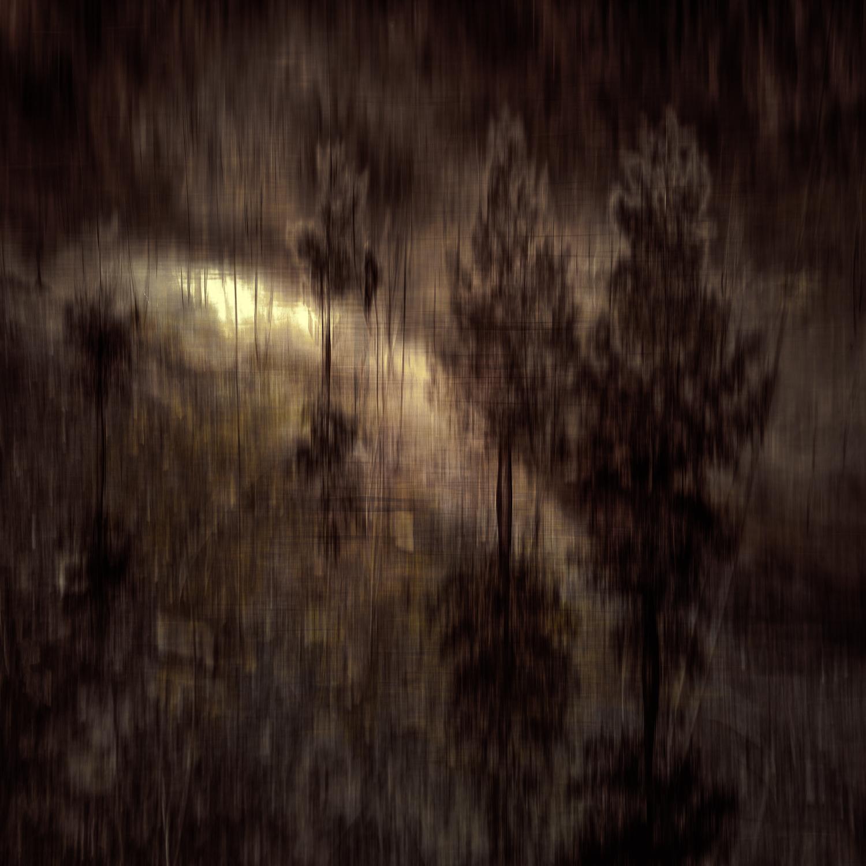 Running thru the woodsV2-Edit.jpg