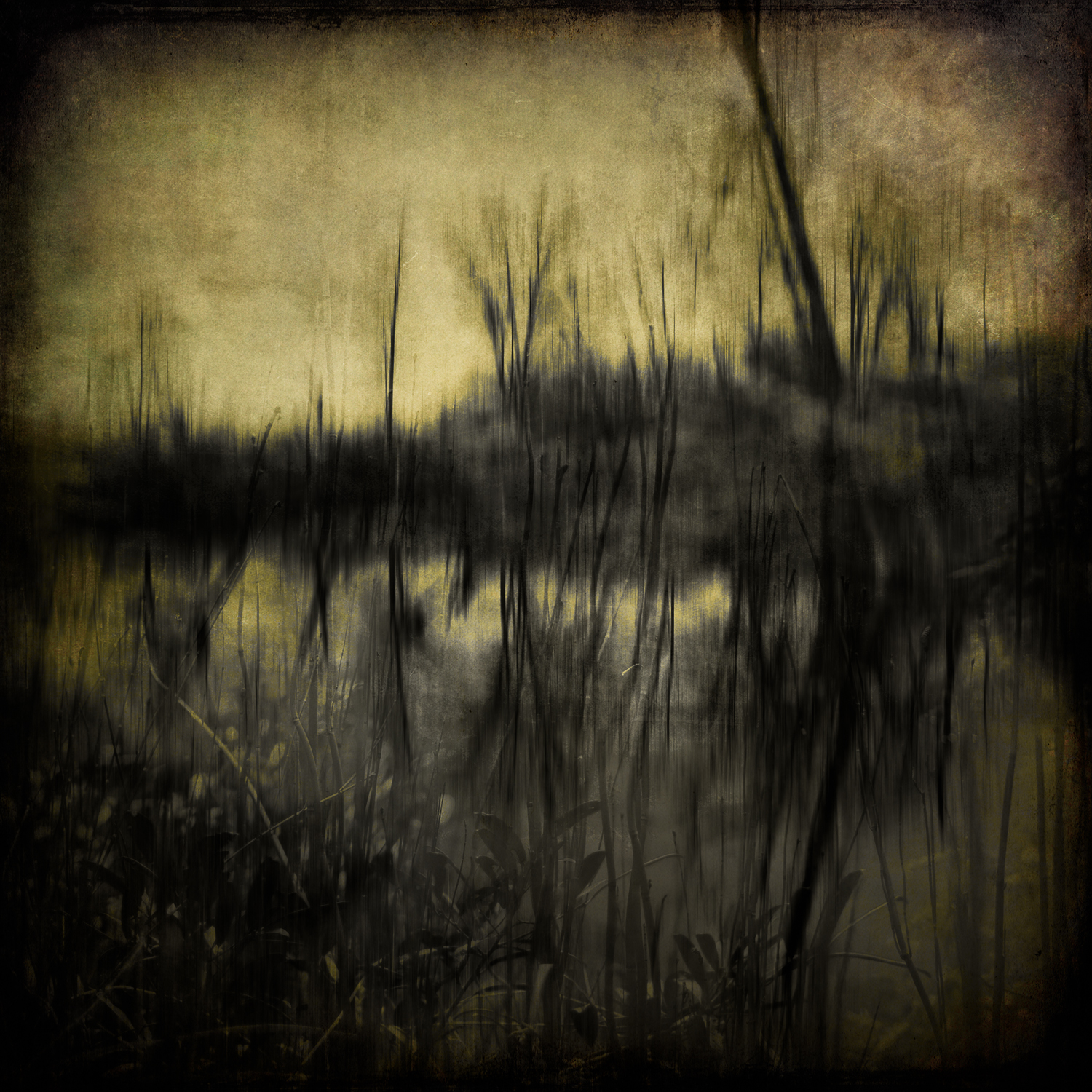 Darkness By the Lake #7