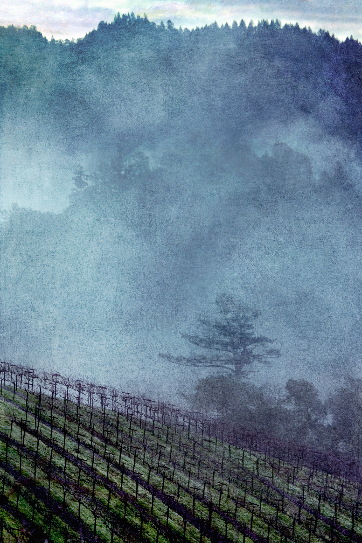 blue_fog.jpg
