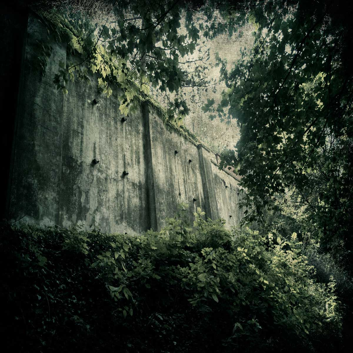castle_wall_in_the_woods20x20v2.jpg