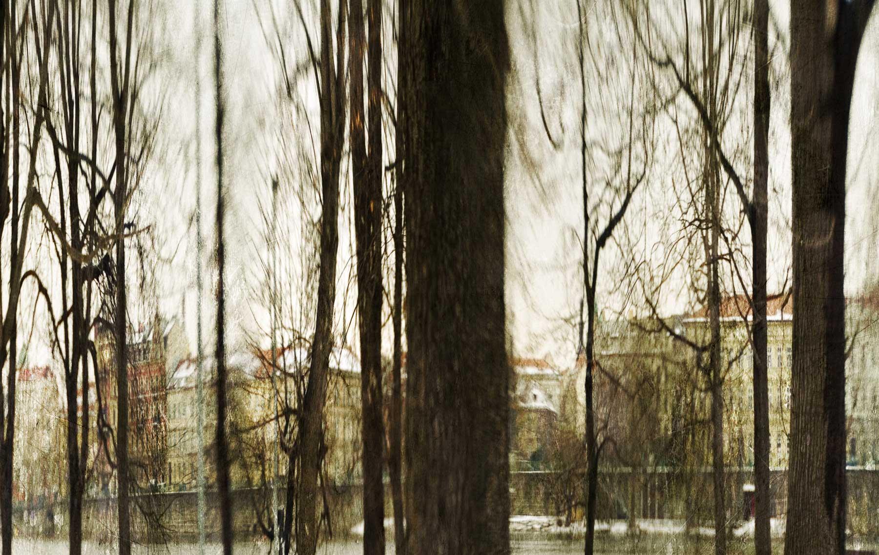 Prague-thru-the-trees.jpg