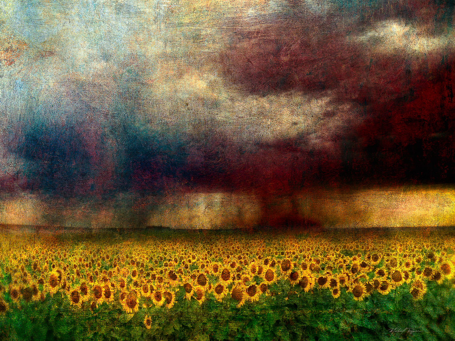 sunflower_storm_36x48.jpg