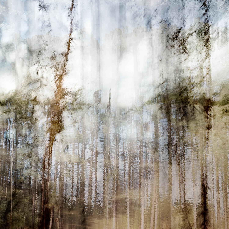 Altered Landscapes #10_36x36 Print.jpg