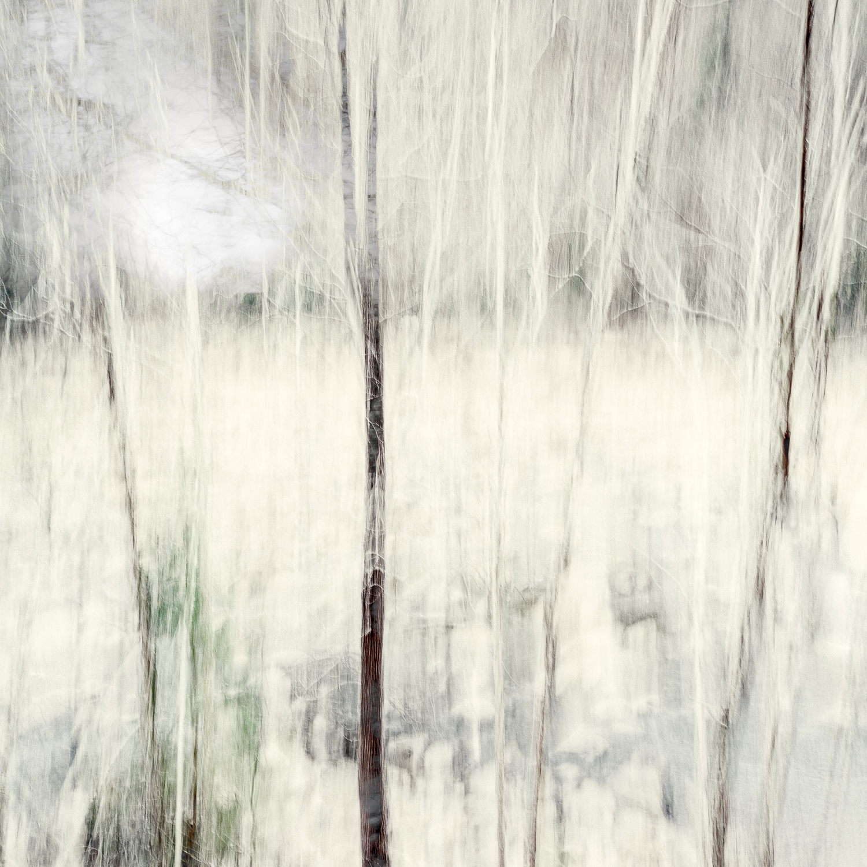 Altered Landscapes #17_V3_36x36 Print.jpg