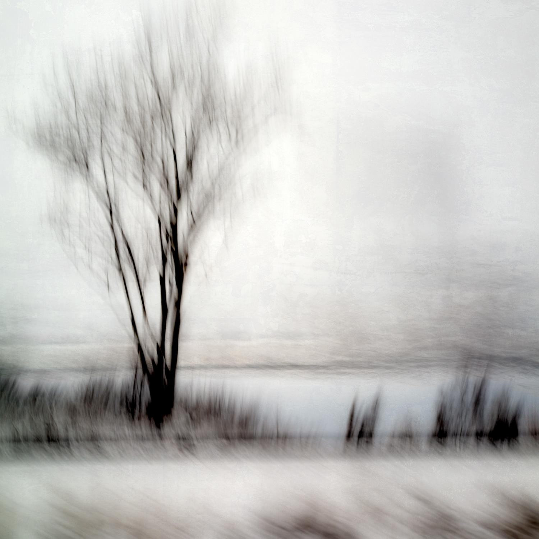 Altered Landscapes #75c2.jpg