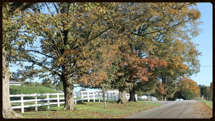 Fairmont Farm