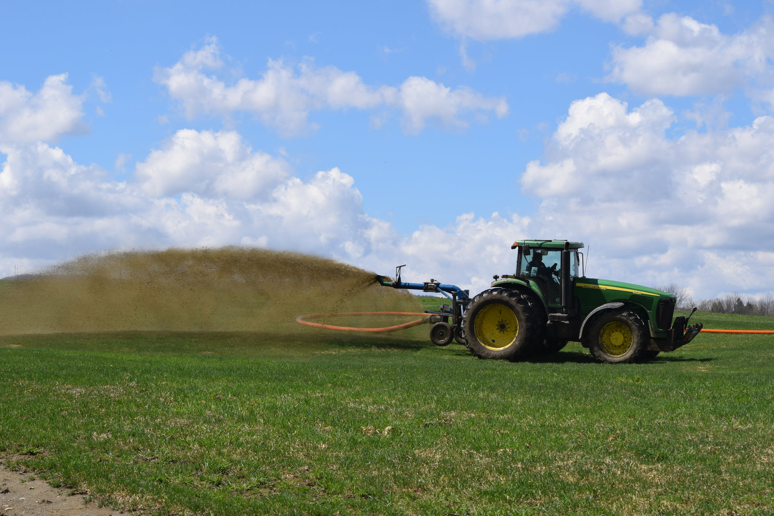 """Manure spread using the """"drag hose"""" method of piping manure through a hose straight from the manure pit to the tractor."""