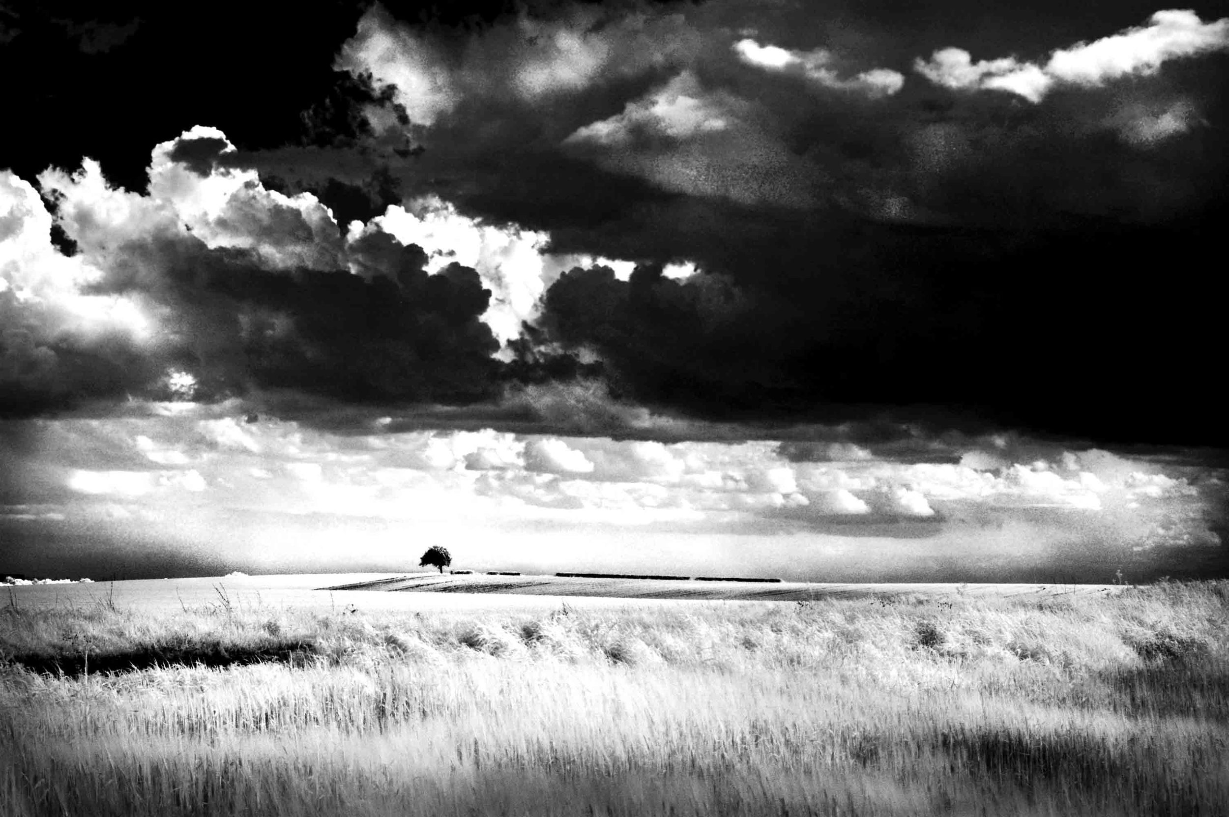 Storm over Towton, by Rae Tan