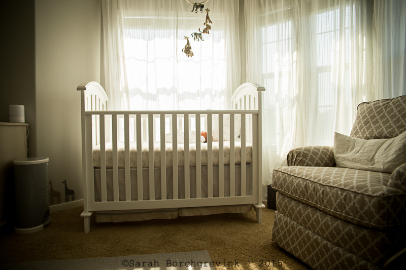newborn lifestyle photography 77433
