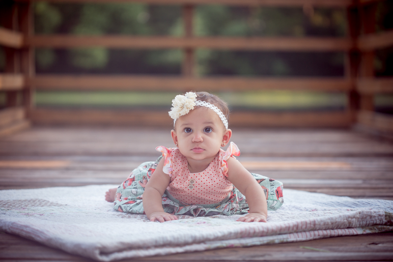 six month old natural light photography session houston, texas 77065