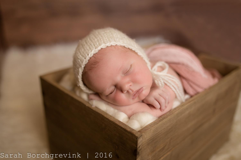 On Location Newborn Photographer   Houston