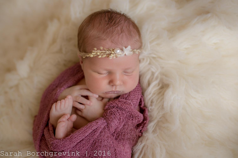 In Home Newborn Photos   Cypress TX