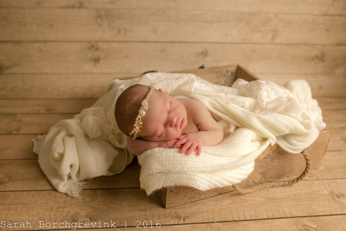 Cream and Lace Baby Girl Newborn Session | Cypress TX